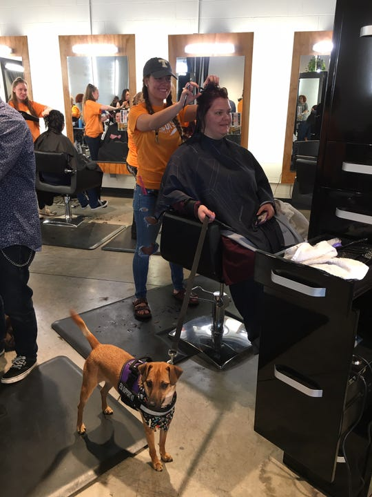 Savannah Chase - a recent newlywed - enjoys the professional styling provided by Chloe Heschong of Bellezza Salon. Chase's dog Baxter waits patiently, watching the goings-on.