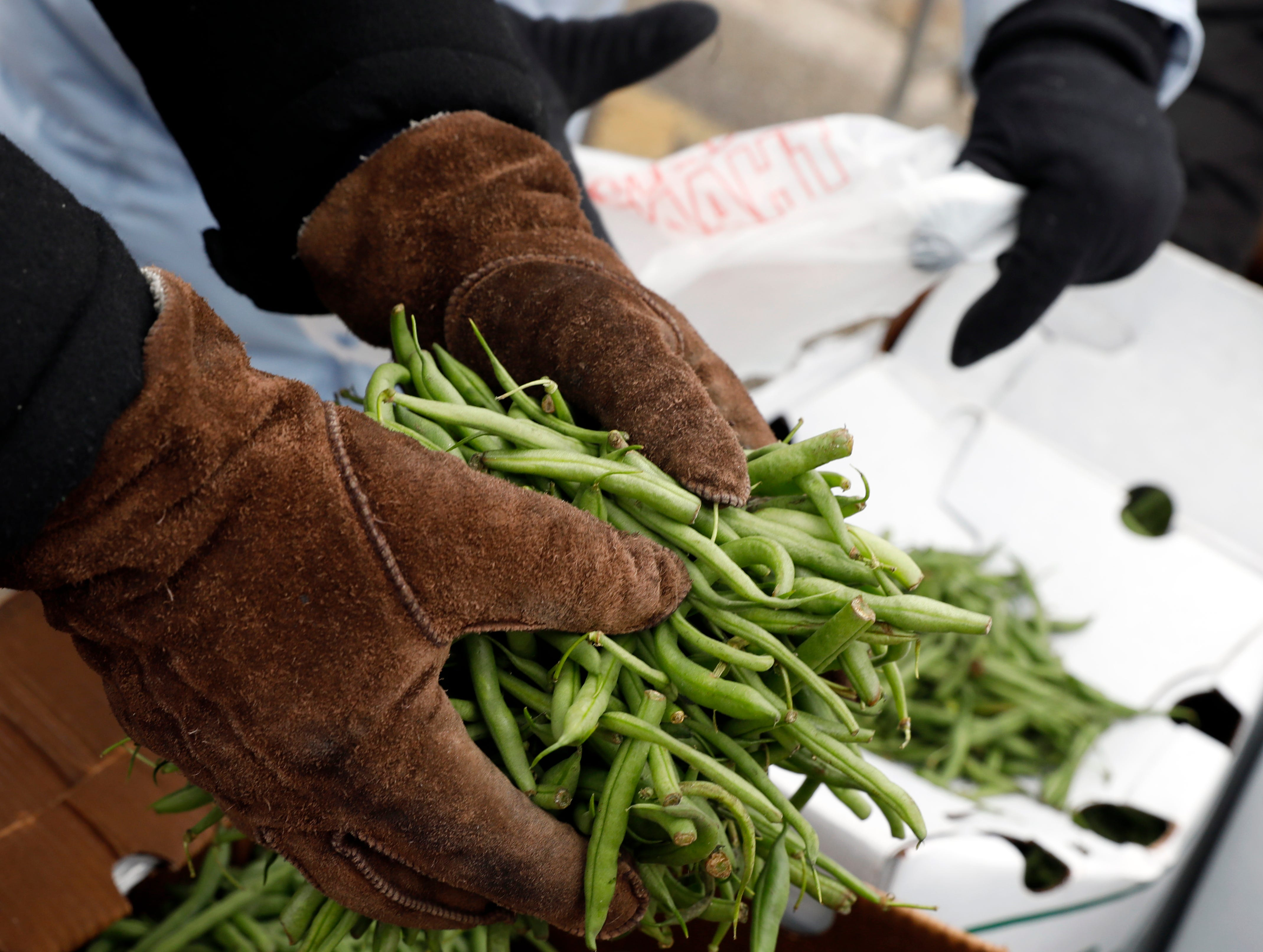 Volunteers bag green beans Friday, Nov. 16, 2018, on East Main Street in Lancaster. The beans were just one of the items given to Lutheran Social Services clients so they can create a Thanksgiving meal.
