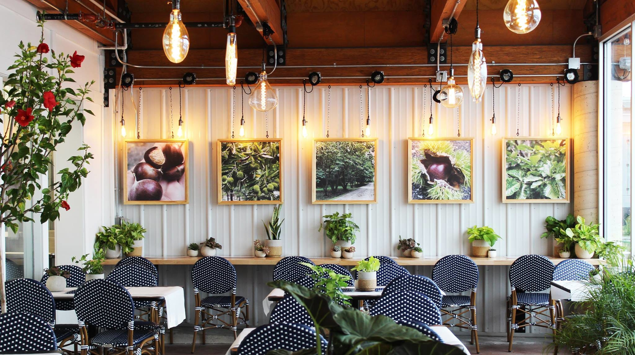 Horrocks adds indoor seating and Groovy Donuts
