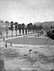 Palm lined driveway through the golf course in the 1950s.