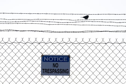 A bird sits on the fence at Canyon Mine,  a uranium mine located 6 miles southeast of Tusayan on the Kaibab National Forest.