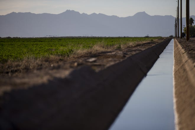 An irrigation canal delivers water to fields in the Gila River Indian Community near Chandler, Ariz.