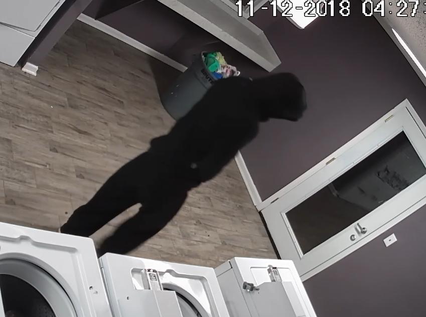 Shreveport police seek help in identifying laundry room burglar
