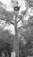 Many years ago, a  tree lookout was one way the Forest Service got eyes into the sky to search for forest fires.