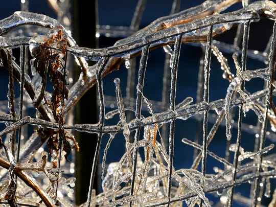 Ice covers metal fence along Frontier Drive on an icy Friday morning, Nov. 16, 2018.
