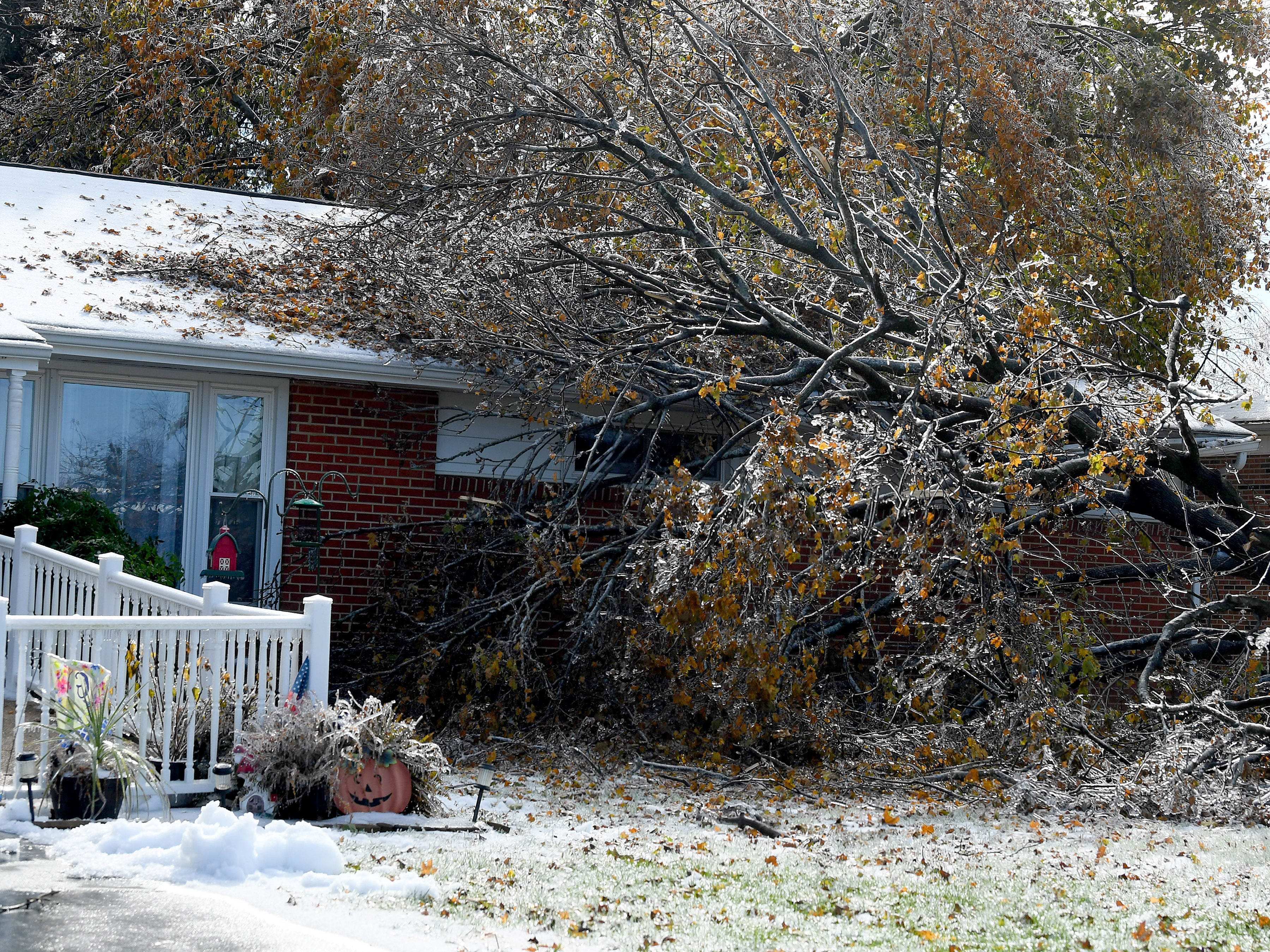 A fallen tree partially obscures the house it has fallen against in Fishersville in the wake of an ice storm Friday, Nov. 16, 2018.