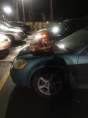 This photo was posted on Facebook by UniteCloud Thursday, Nov. 15. The post said a Somali man left the St. Cloud Area Family YMCA and found a skinned deer carcass on the hood of his car. Police are investigating the incident.