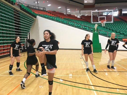 FAMU middle blocker/outside hitter Karina Pressoir stretches prior to practice. The Rattlers face Morgan State in the first round of the 2018 MEAC Volleyball Tournament.