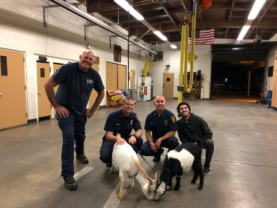 Eli Bahar, right, brings his goats to a fire station in the San Fernando Valley for a therapy session.