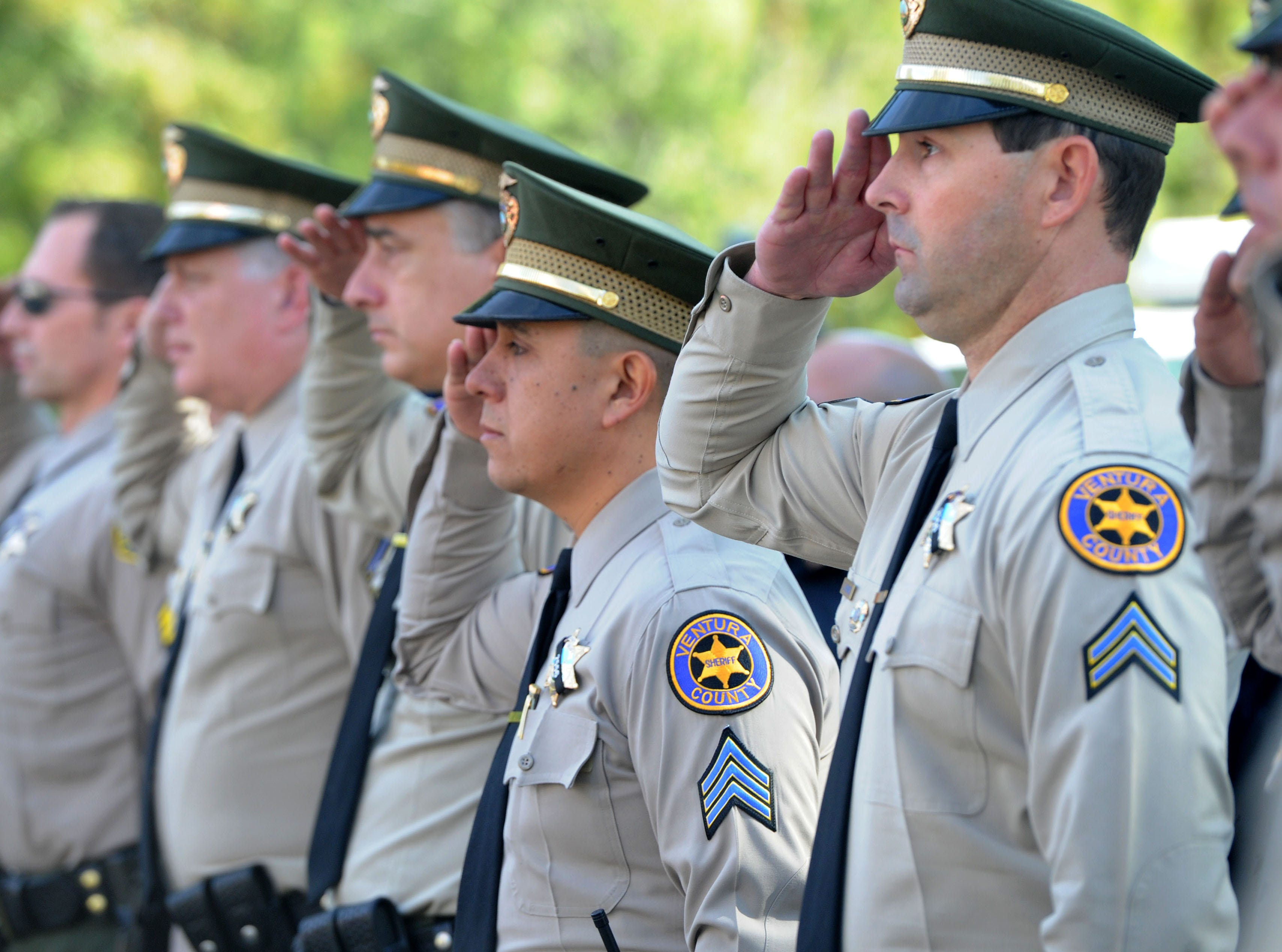 Law enforcement personnel salute as the casket of Ventura County Sheriff's Office Sgt. Ron Helus is driven from his memorial service at Calvary Community Church Thursday. He was later buried at Pierce Brothers Valley Oaks Memorial Park on Lindero Canyon Road.