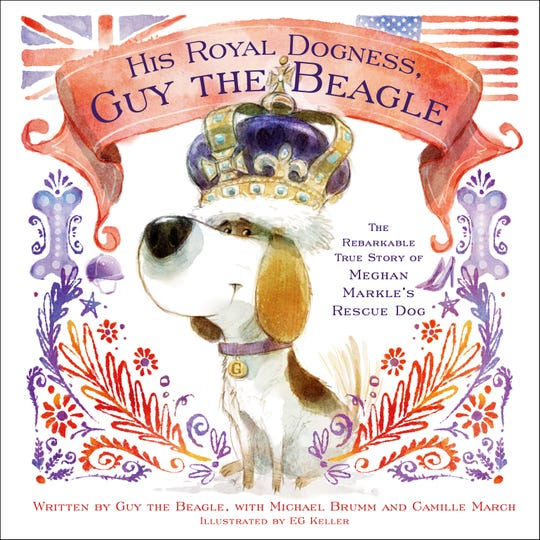 """His Royal Dogness, Guy the Beagle"""