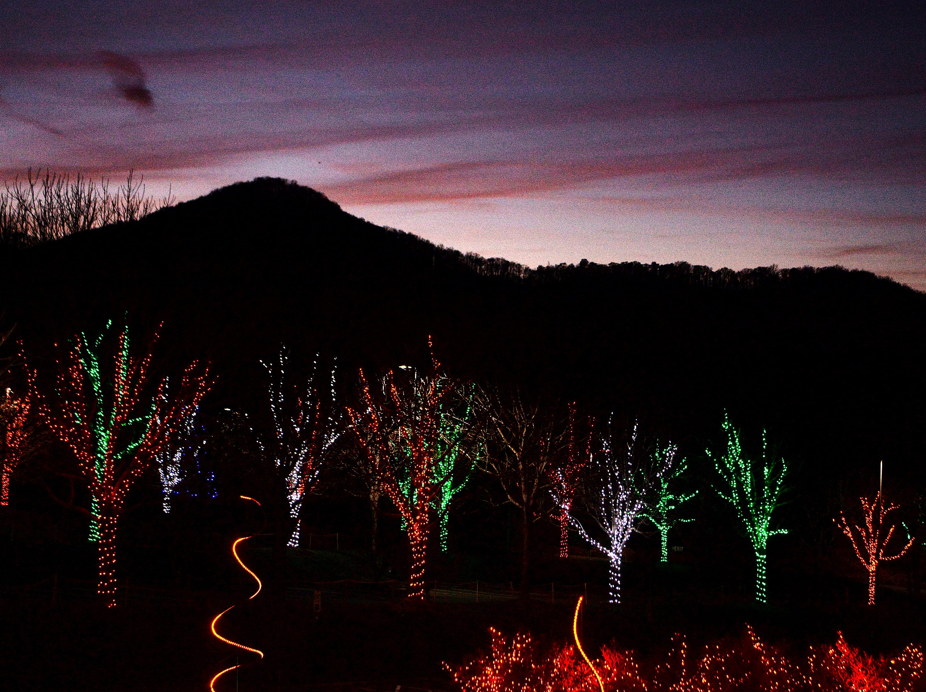 The North Carolina Arboretum's annual Winter Lights show will be open nightly through the end of the year featuring numerous festive displays using more than 500,000 LED bulbs.
