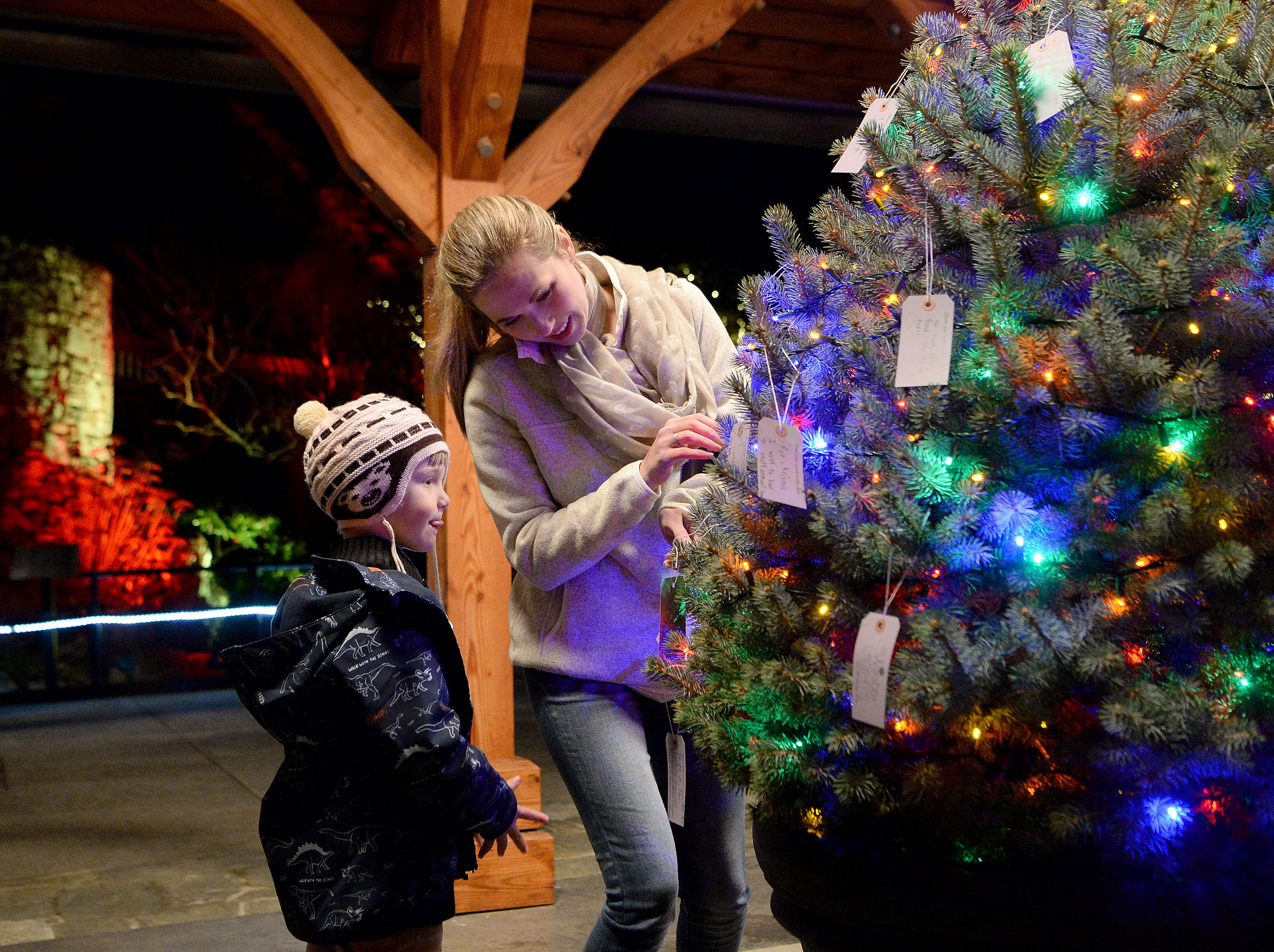 Jack Gibson, 5, helps his mom, Candes, decide where to hang her wish on a Wishing Tree during the Winter Lights show at the North Carolina Arboretum on Nov. 16, 2018. The show runs nightly through the end of the year.