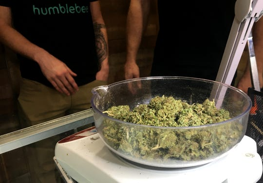 Marijuana is weighed on a scale at HumbleBee Products medical marijuana dispensary and processor in the northwest Michigan town of Frederic. They are the first dispensary to be licensed in northern lower Michigan.