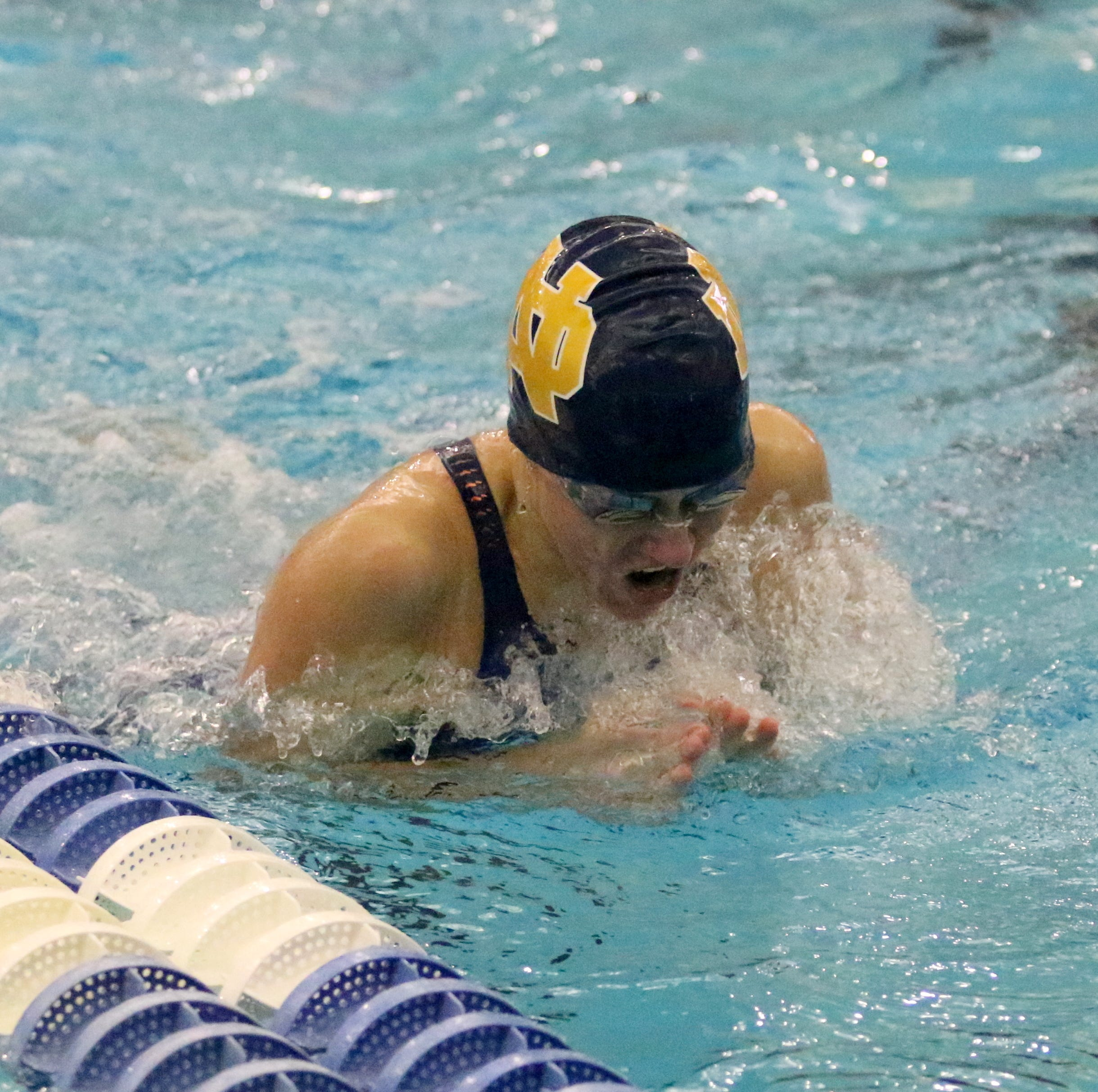 NYS Swimming and Diving: Notre Dame's Craig places fifth; Owego puts four in top 10