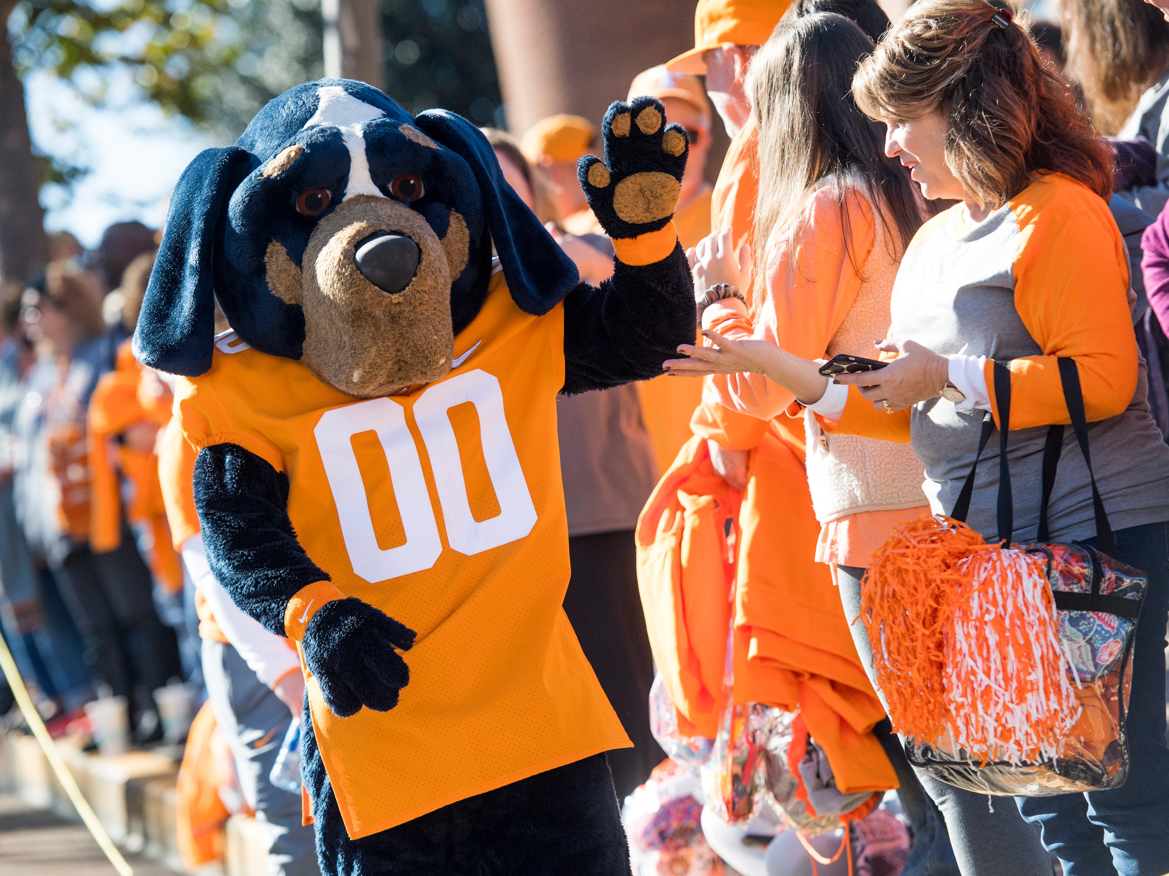 Smokey high fives fans before the Tennessee Volunteers take on the Missouri Tigers in Neyland Stadium on Saturday, November 17, 2018.