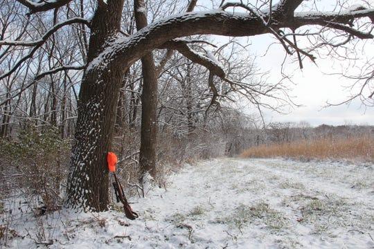 A deer hunter's rifle and blaze orange cap rest against an oak tree near Dodgeville.