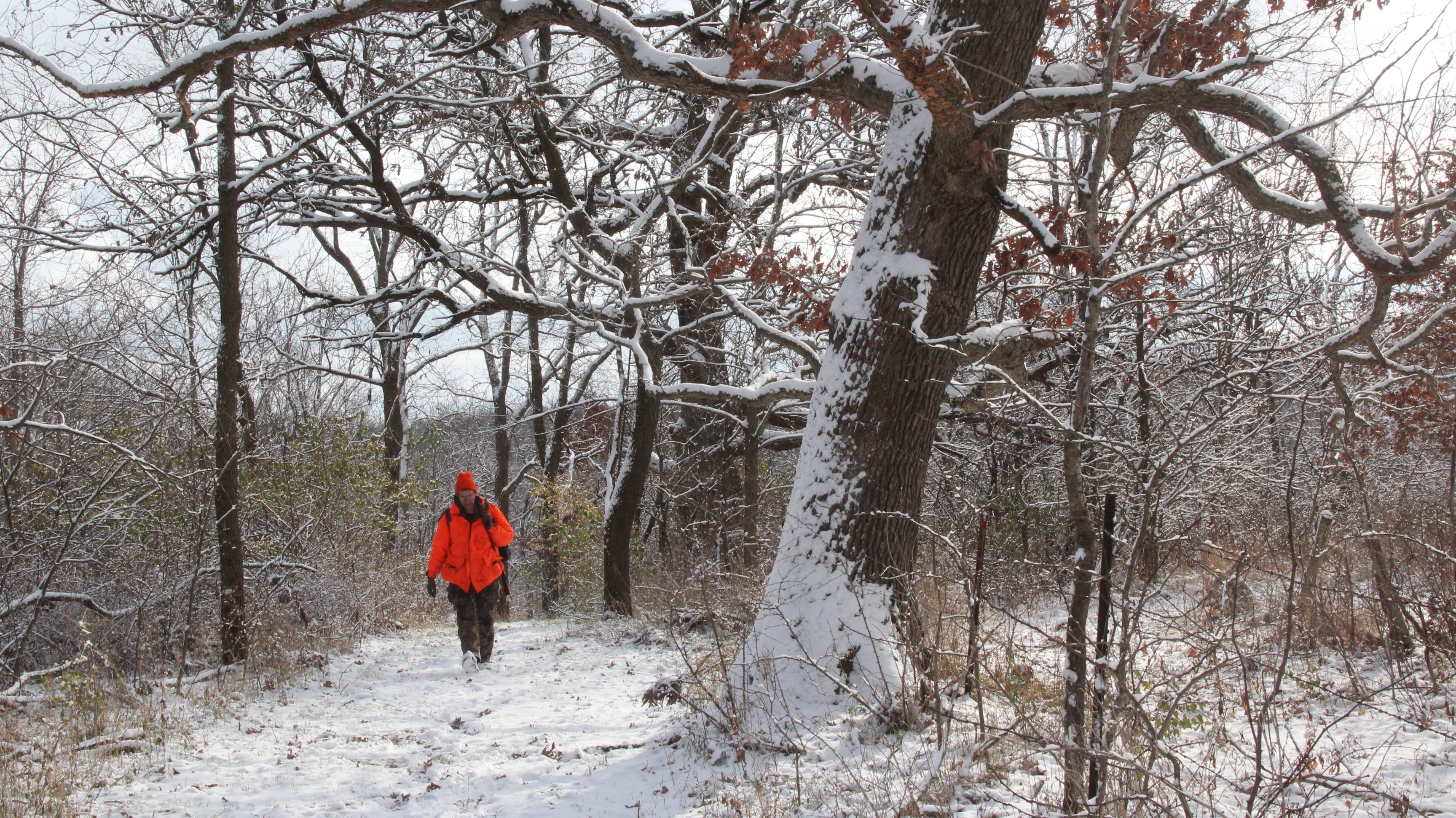 Smith: Wisconsin deer research gets an essential assist from landowners