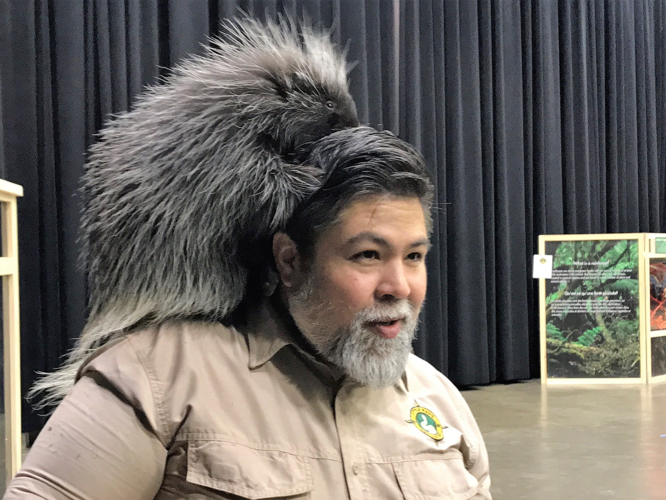 Andre Ngo of Little Ray's Nature Centers gets a grooming from Quilber Thistlebeaver III at the Natural History Exhibition on Nov. 17, 2018. Little Ray's Nature Centers and ZooAmerica coordinated with the Foundation for Animal Rescue and Education for the weekend-long exhibit, held at the Mid-Hudson Civic Center in Poughkeepsie. It also features a sloth, an armadillo, rabbits, snakes and more.