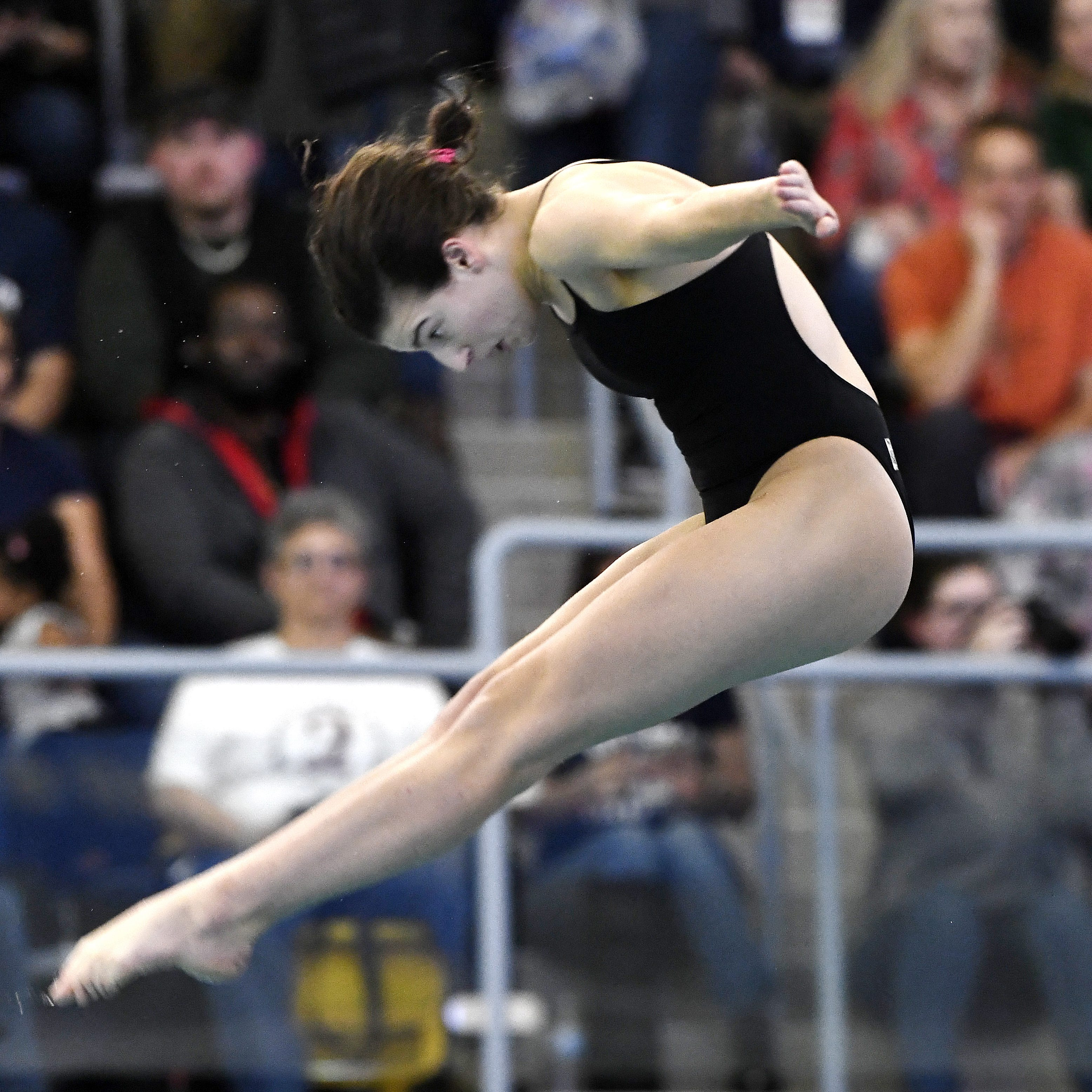 Brighton's Hannah Butler wins diving state championship