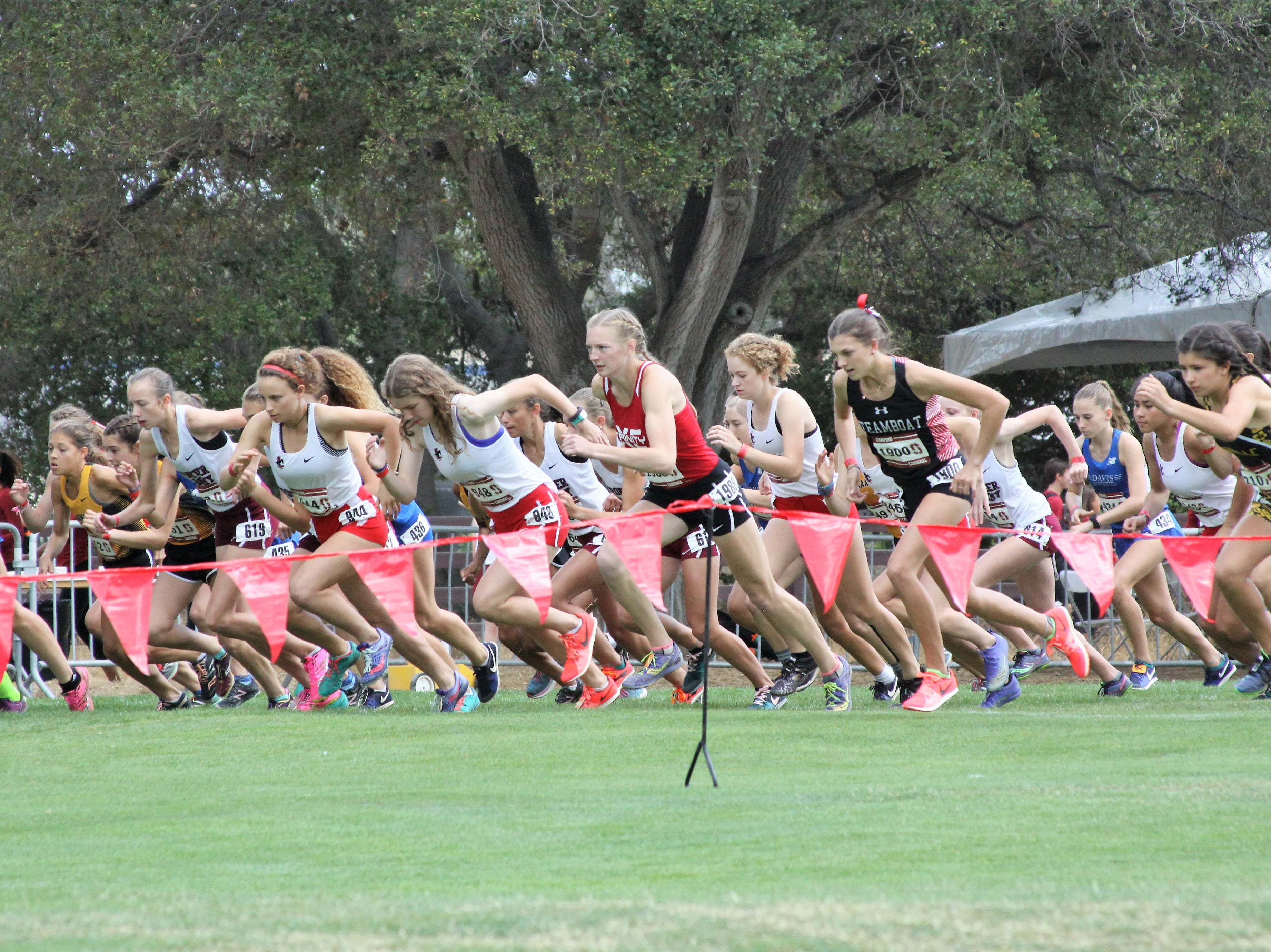 Trinity runner Lauren Harper signed with Division-I program San Diego State on Friday, Nov. 16. Harper is Trinity's first athlete to have an early signing with an NCAA program.