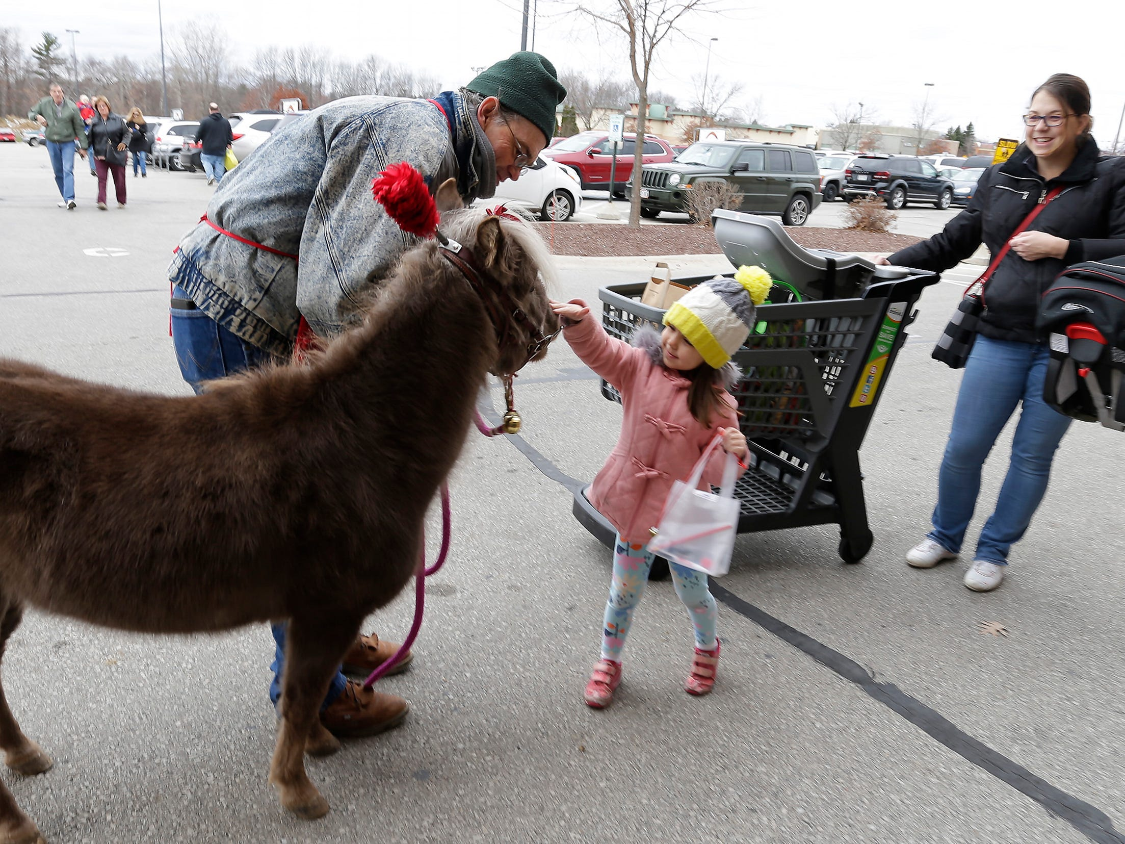 Mini-horse Mr. T and handler Mark Webb, let Isabel Kultgen, 4, pet the horse as mom Crystal observes at Festival Foods, Saturday November 17, 2018, in Sheboygan, Wis. The horse and Webb was part of the Salvation Army's Red Kettle Campaign kickoff.