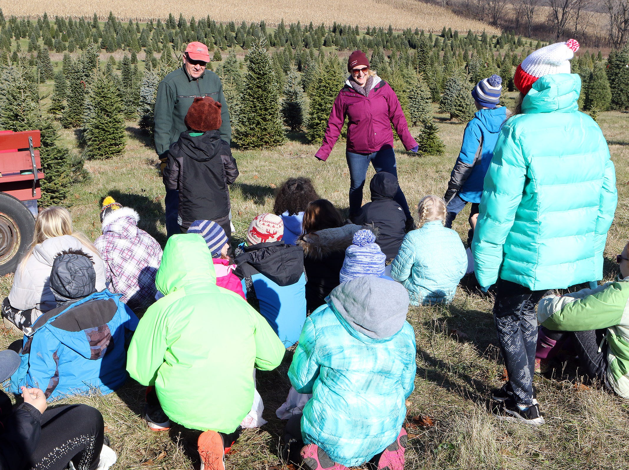 New Glarus and Albany fourth and fifth grade students visit an education station during a visit to Lancaster's Winterberry Tree Farm in Brooklyn to learn about the Christmas tree industry on Nov. 15.