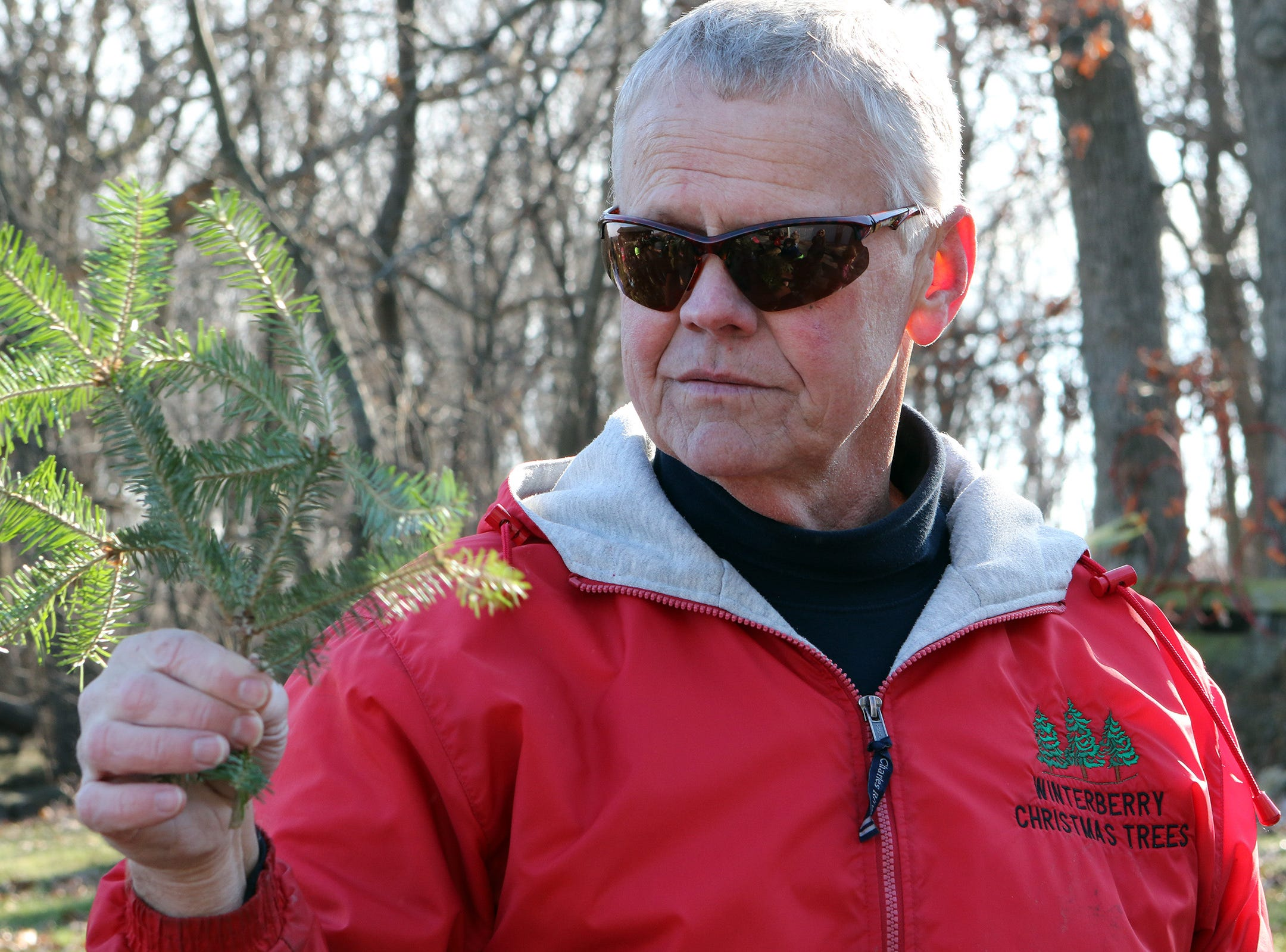 Greg Lancaster, owner of Lancaster's Winterberry Tree Farm in Brooklyn, shows student how needles grow on branches of fir trees during a visit to learn more about the Christmas tree industry on Nov. 15.