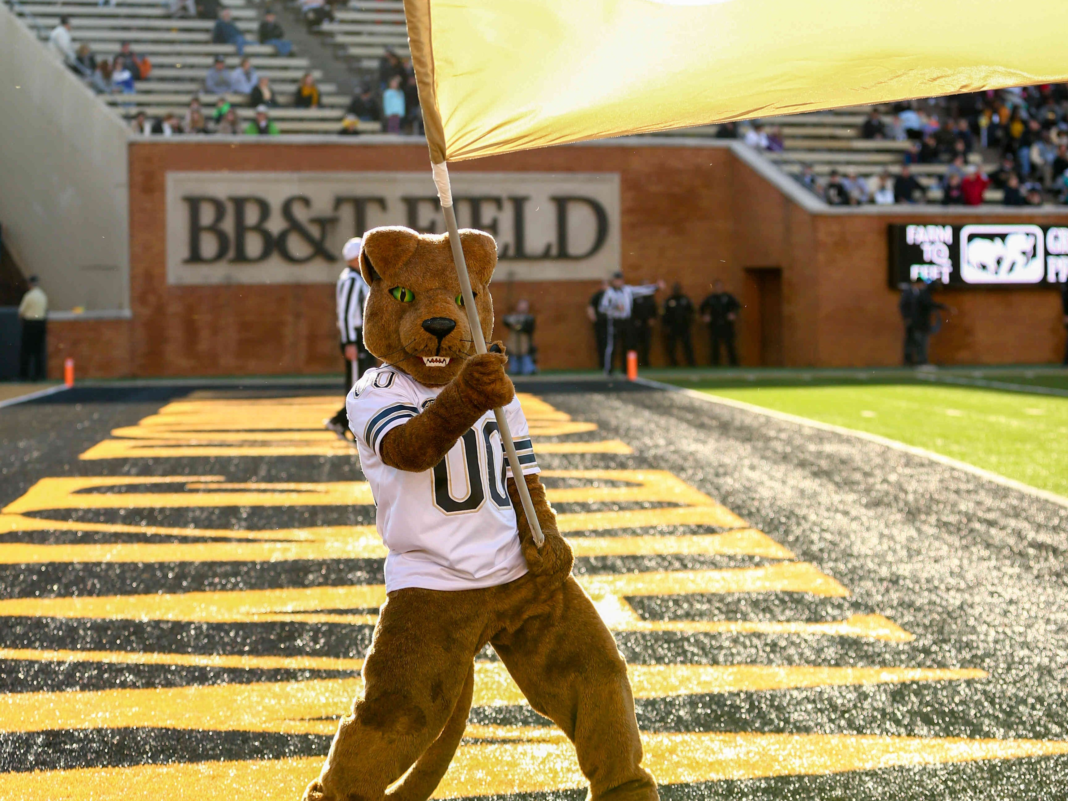 Week 12: The Pittsburgh Panthers mascot waves the flag during the fourth quarter against the Wake Forest Demon Deacons.