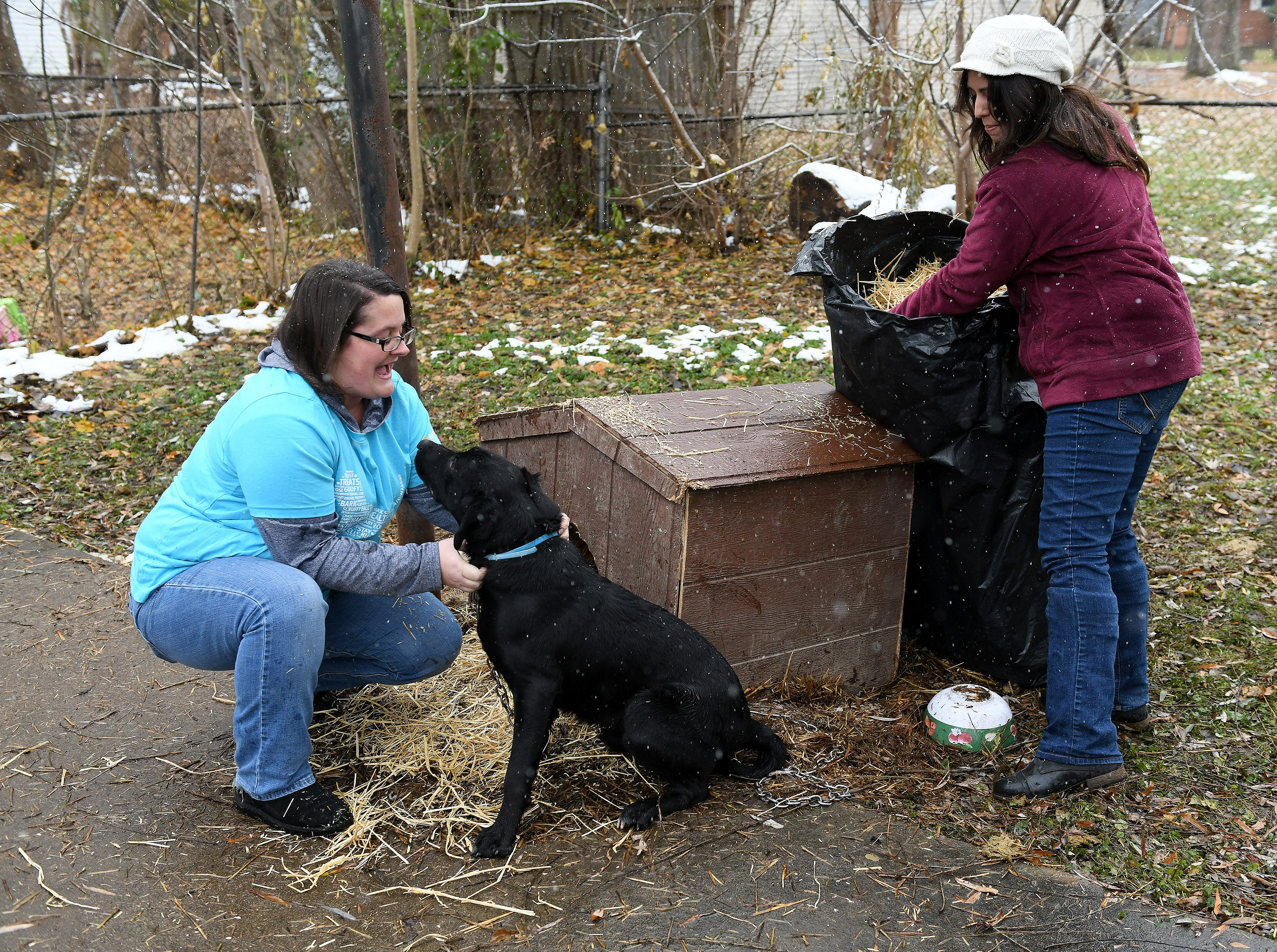 As part of the outreach of the Animal Care Network, volunteers from Banfield Pet Hospital, Kelly Abate, left, visits with Black while she and Elizabeth Vega deliver fresh straw at his home in Pontiac.