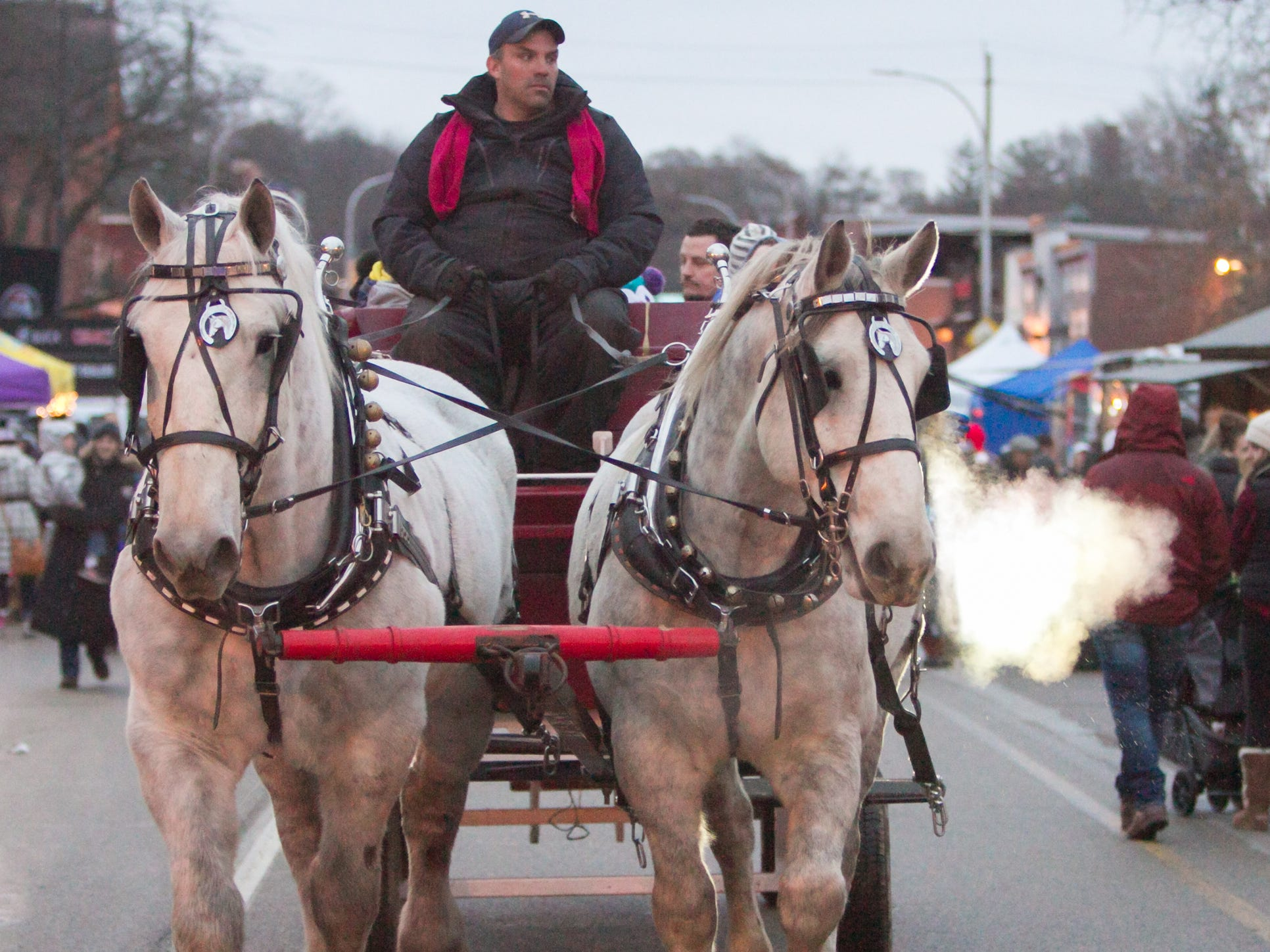 Mac, left, and Charlie pull a hay ride provided by Ann Arbor Carriage at Brighton's Holiday Glow Saturday, Nov. 17, 2018. Charlie exhales as light from a headlight on the carriage shines through the steam in his breath.