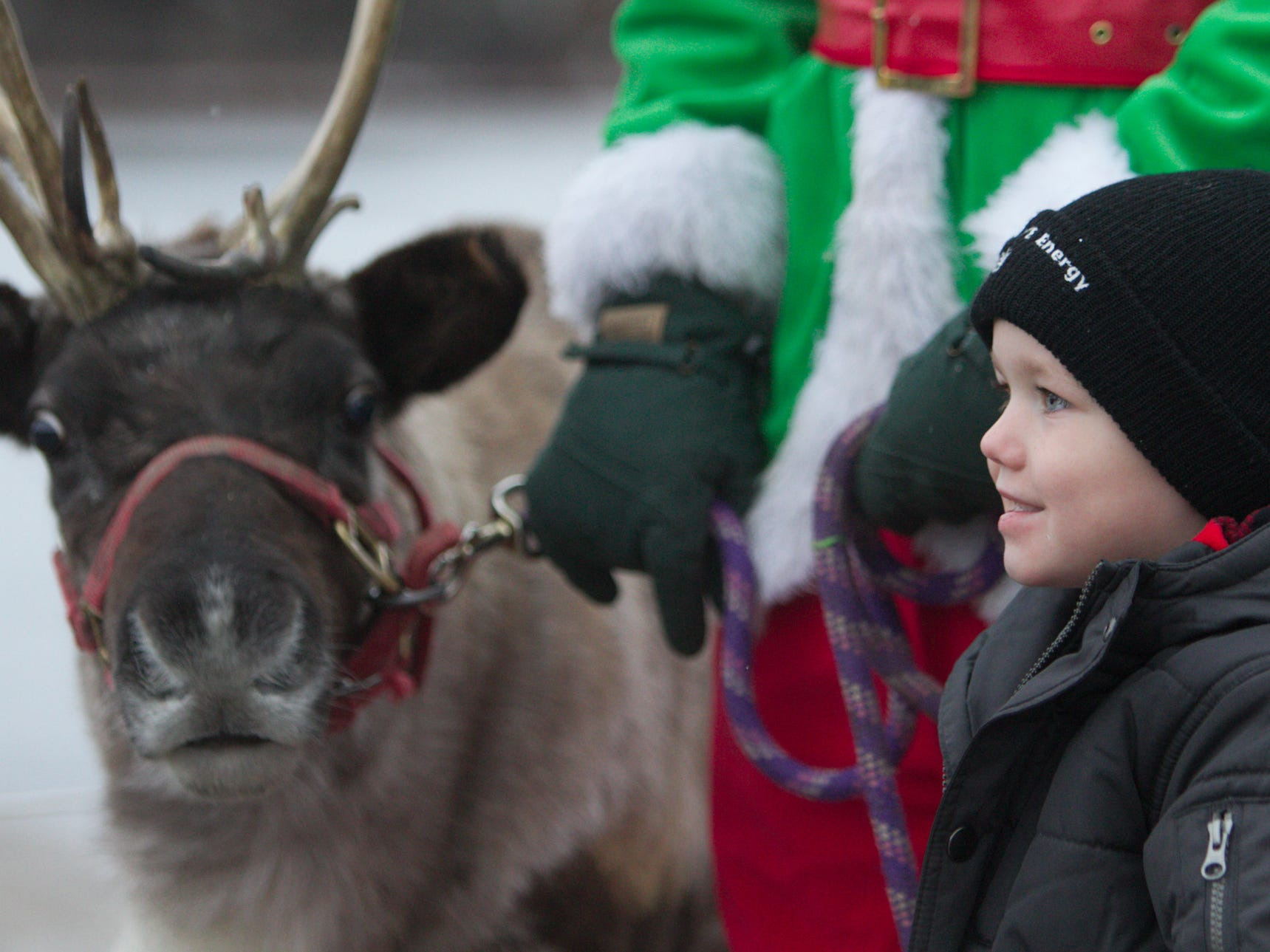 3-year-old Max Fry poses with Bell, a reindeer from Carousel Acres Saturday, Nov. 17, 2018 at the Brighton Holiday Glow.