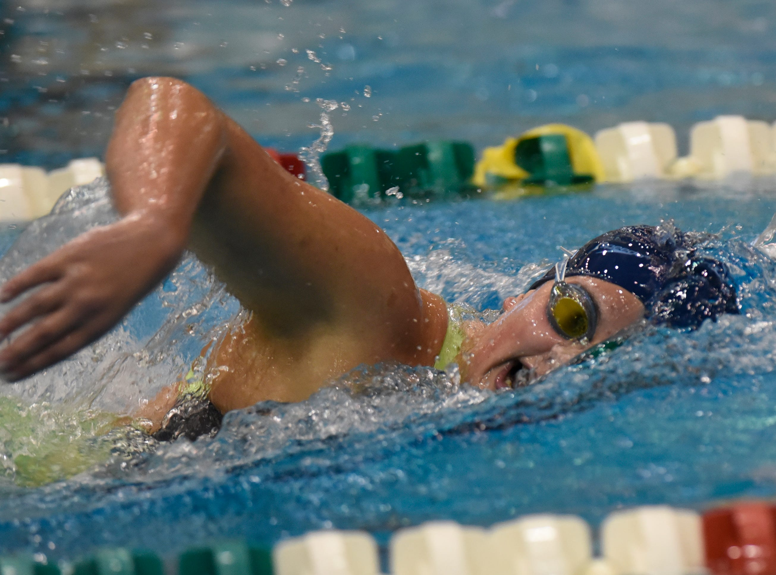 Livonia Stevenson's Maria Arakelian in the 500 yard freestyle at the Division 1 girls swimming and diving championships held at Eastern Michigan University  Nov. 17, 2018.