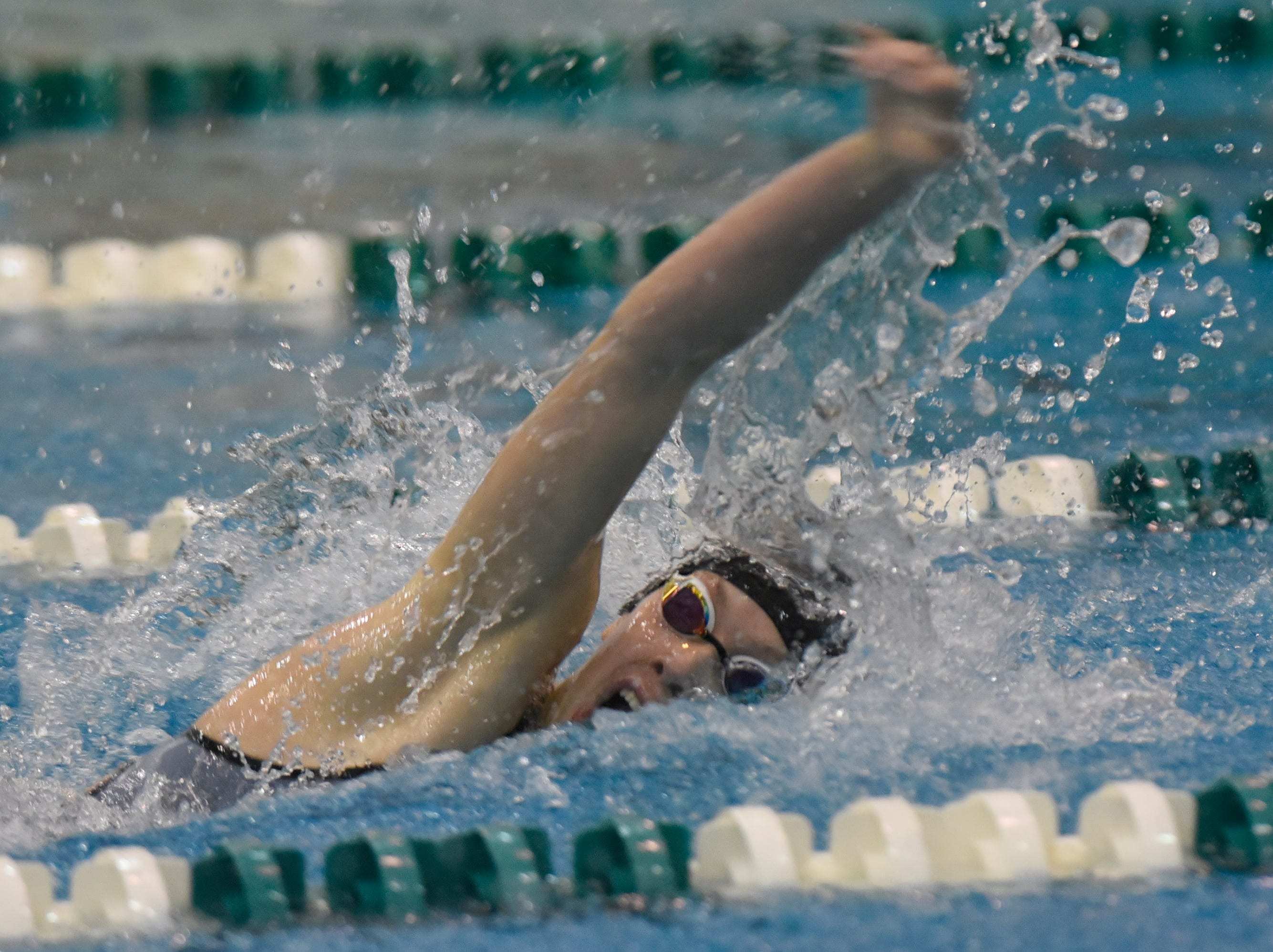 Harrison/Farmington's Ashley Turak in the 100 yard freestyle at the Division 1 girls swimming and diving championships held at Eastern Michigan University Nov. 17, 2018.