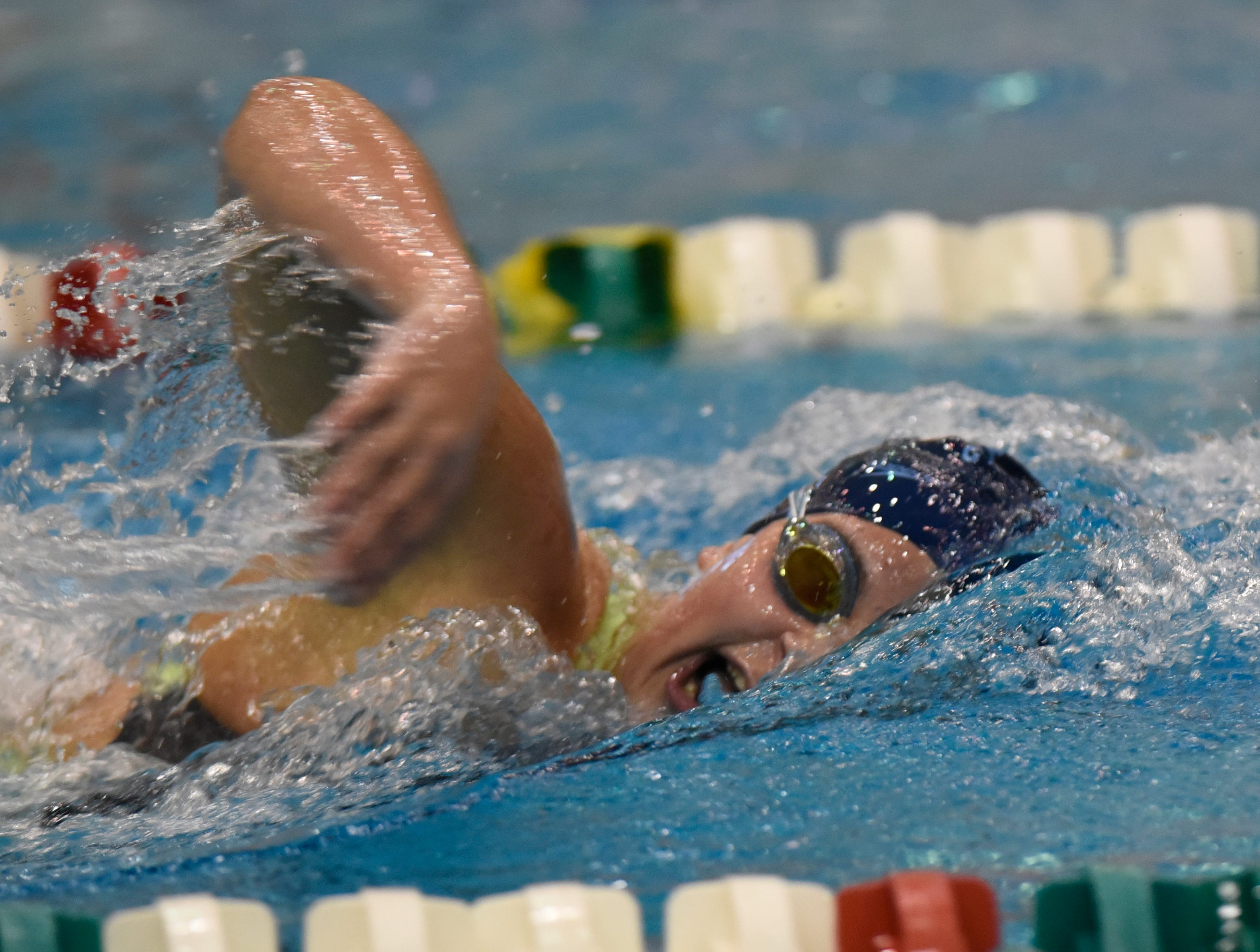 Livonia Stevenson'sMaria Arakelian in the 500 freestyle at the Division 1 girls swimming and diving championships held at Eastern Michigan University Nov. 17, 2018.