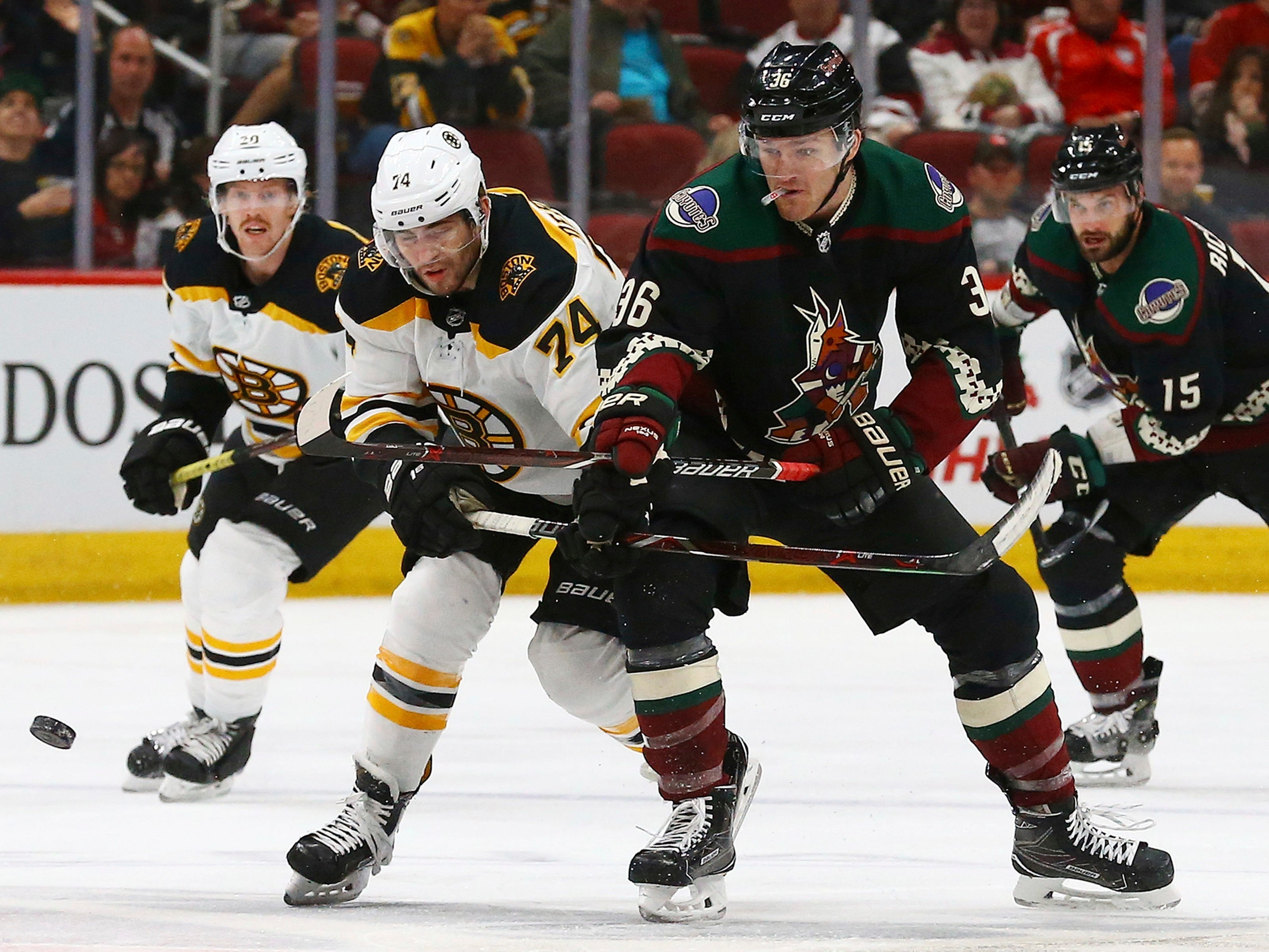 Arizona Coyotes right wing Christian Fischer (36) battles with Boston Bruins left wing Jake DeBrusk (74) for the puck as Bruins center Joakim Nordstrom (20) and Coyotes center Brad Richardson (15) watch during the second period of an NHL hockey game Saturday, Nov. 17, 2018, in Glendale, Ariz. (AP Photo/Ross D. Franklin)
