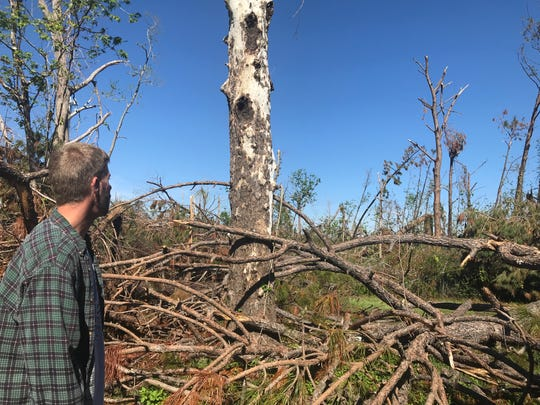 Damon Zeigel looks out at the fallen trees and branches in his backyard after five weeks after Hurricane Michael.