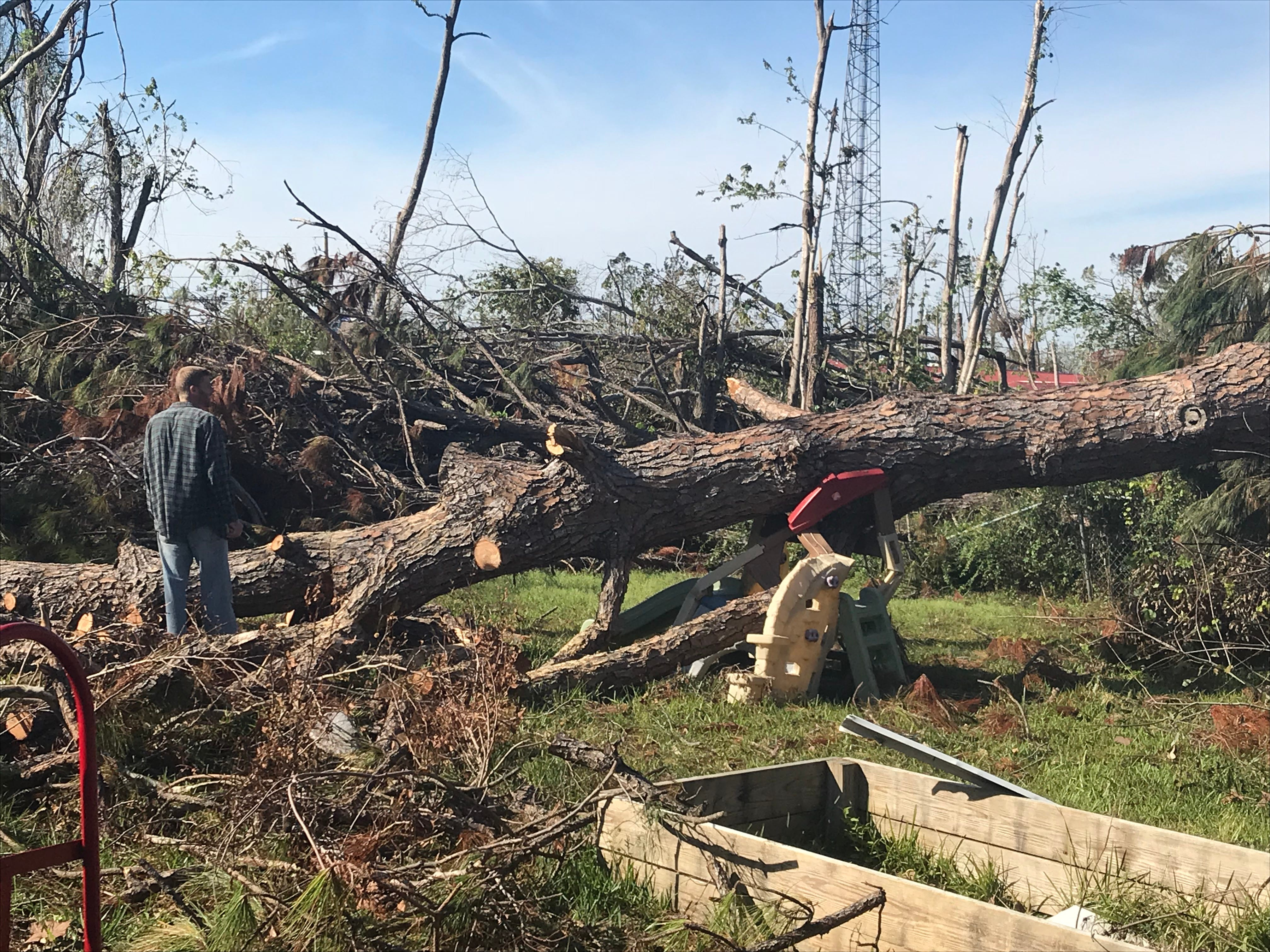 A pine tree in Damon Zeigel's backyard was damaged in the winds of Hurricane Michael in the Florida Panhandle. It fell right onto Zeigel's daughter's slide.