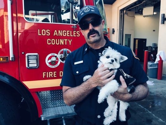 A Los Angeles firefighter holds Koji, an  emotional support dog with Cherry Hill-based Tri-State K-9 Response Team. The team spent five days in California helping those affected by the Thousand Oaks bar shooting and wildfires in California.