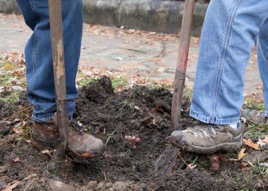 Whitey Coats and Gary McFadden work together to dig spots for the Magnolia trees that were planted Friday afternoon in Chillicothe, Ohio.