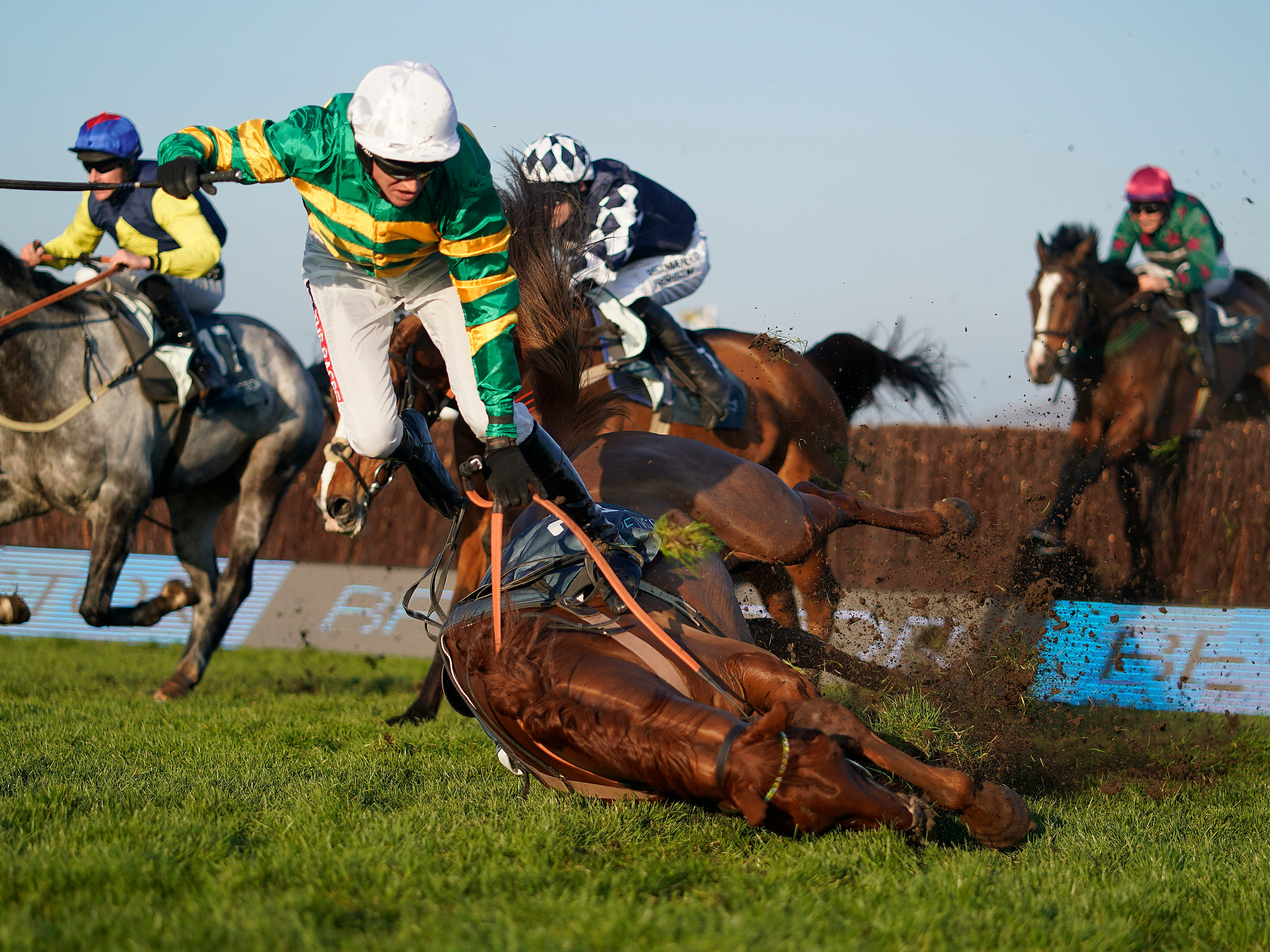 Barry Geraghty falls from Movewiththetimes at Cheltenham Racecourse on November 17, 2018 in Cheltenham, England.