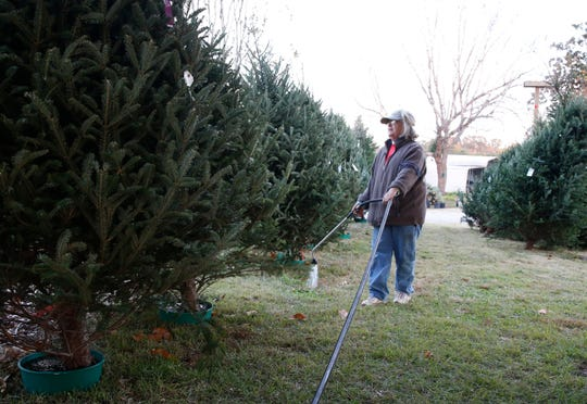 Susan Fink waters pre-cut trees at Mystic Farm in Greenville County Sunday, Nov. 18, 2018.
