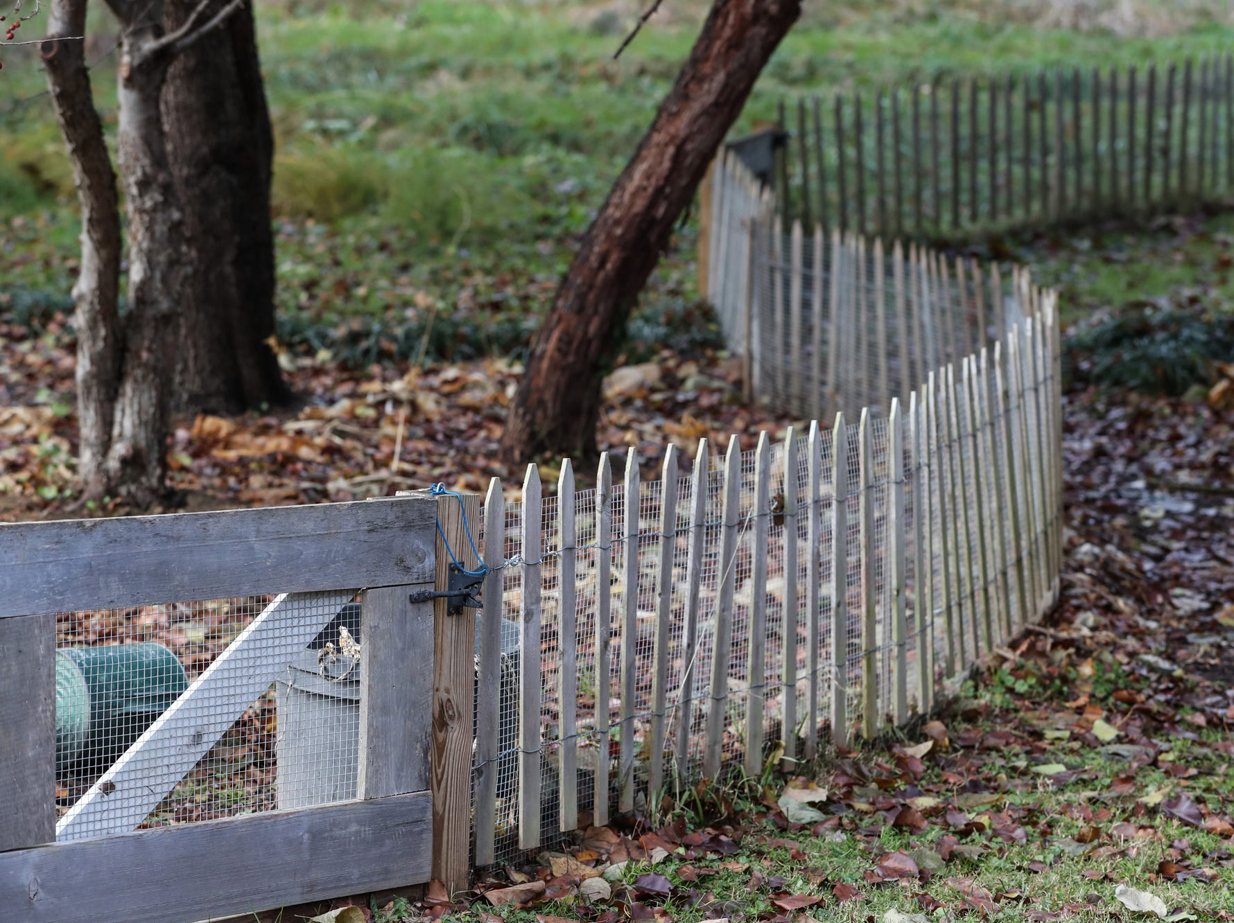 """""""So the wire on this fence actually goes down under the ground,"""" said Adam Schwarz, with a smile on his face. """"Now the animals just jump over it."""""""