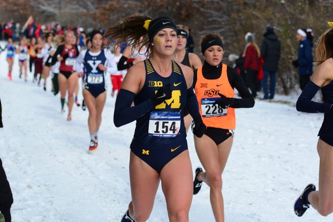 Hartland's Avery Evenson (154) made All-America by finishing 38th in the NCAA cross country championships for the University of Michigan on Saturday, Nov. 17, 2018.