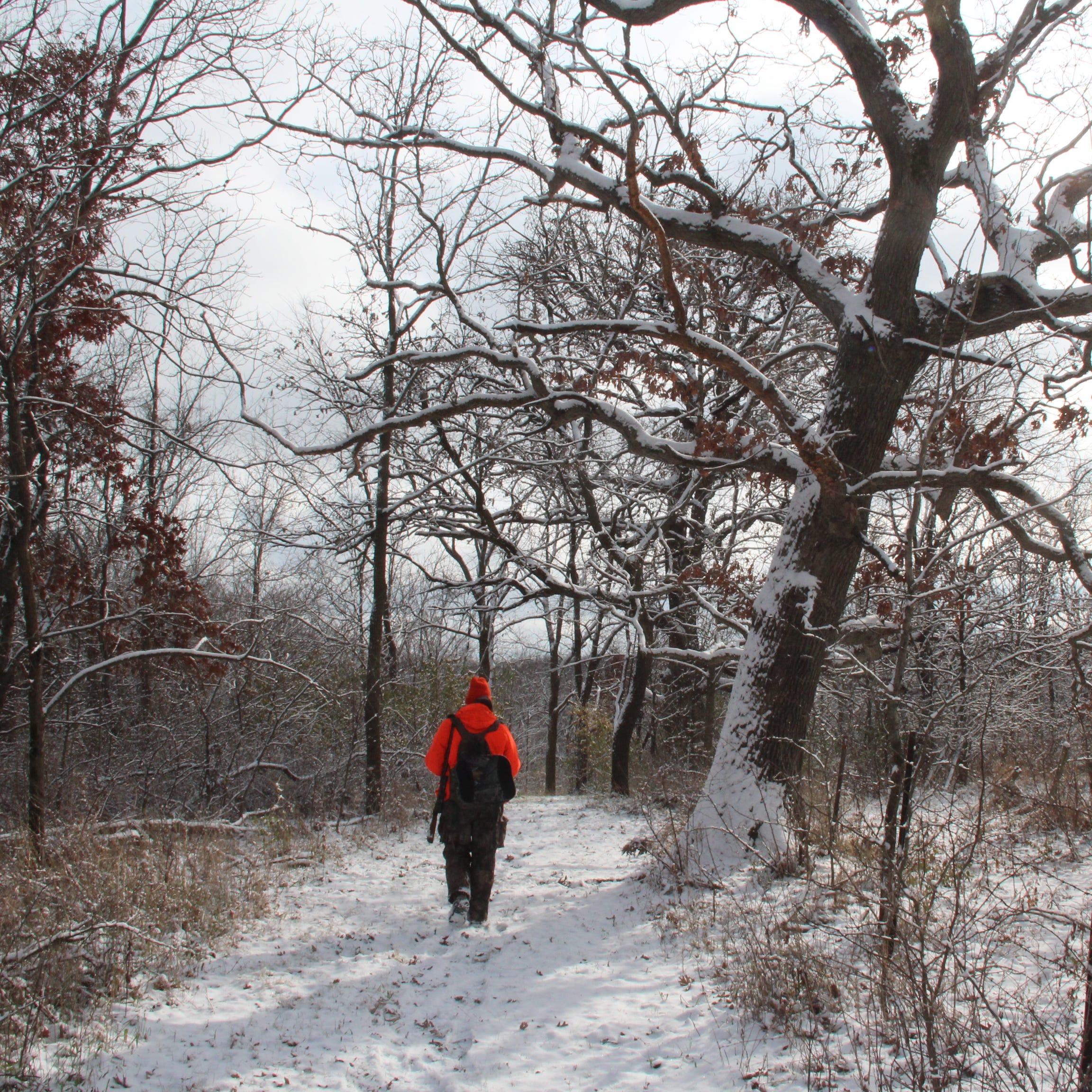 Good conditions and good deer activity reported from Wisconsin's gun deer hunting opener