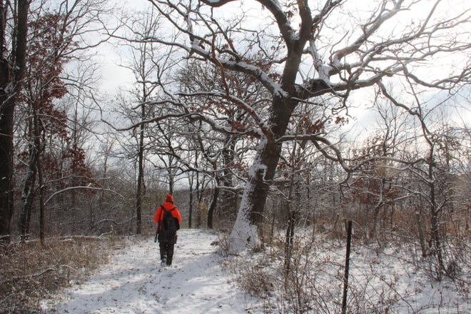 A hunter walks along a path in Iowa County on Saturday, opening day of the 2018 Wisconsin gun deer hunting season.