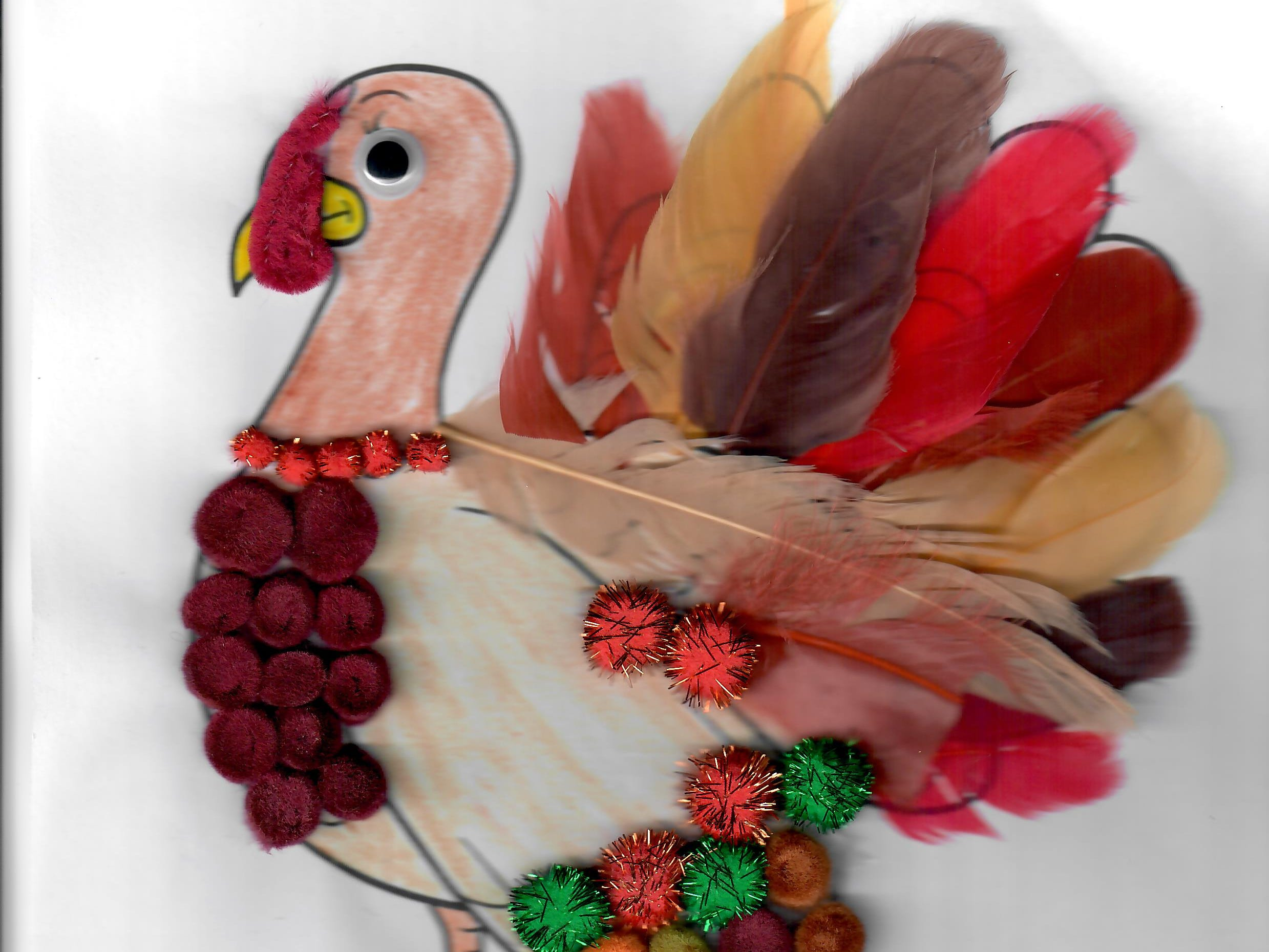 I. Manafra. Dress the Turkey Contest 2018.