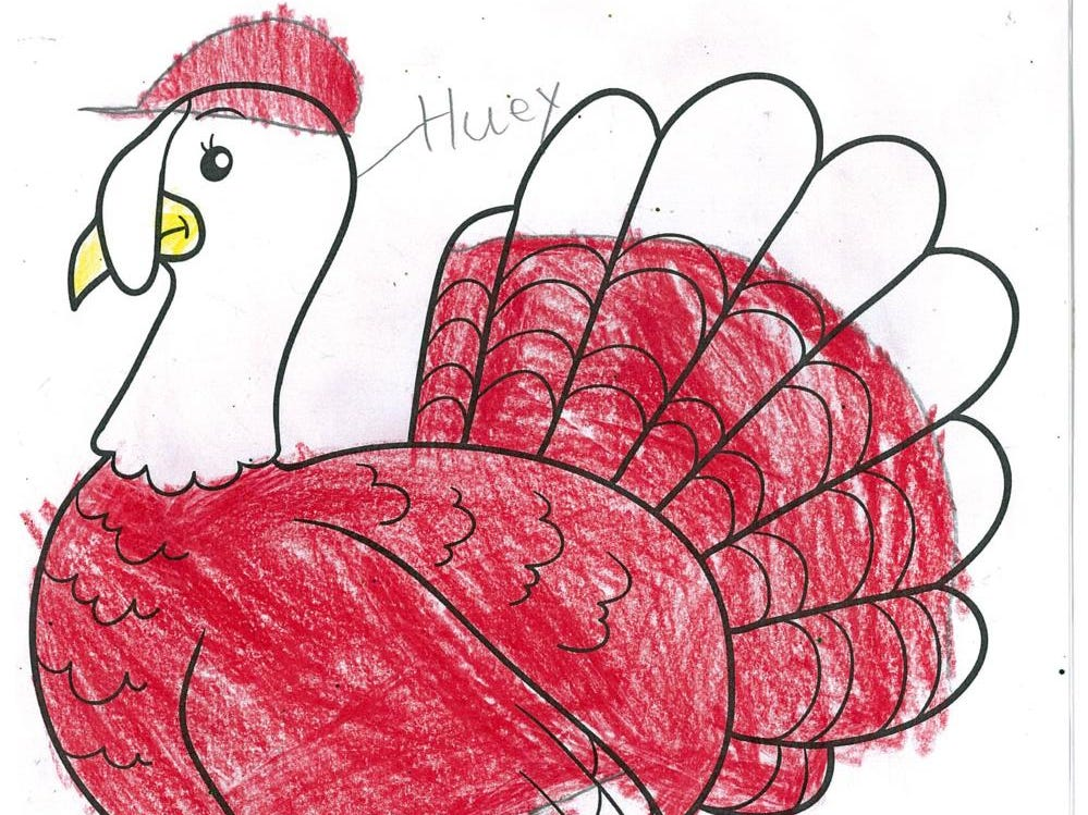 Huey by Sean Delaney, age 10. Dress The Turkey Contest 2018.