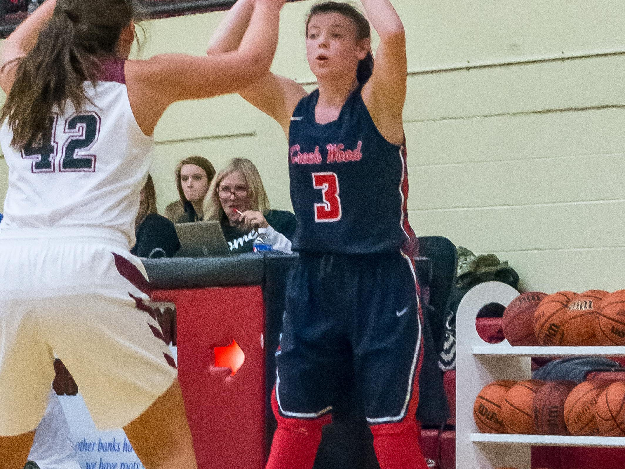Creek Wood's Raegan Hohl finished with five points against Cheatham County.
