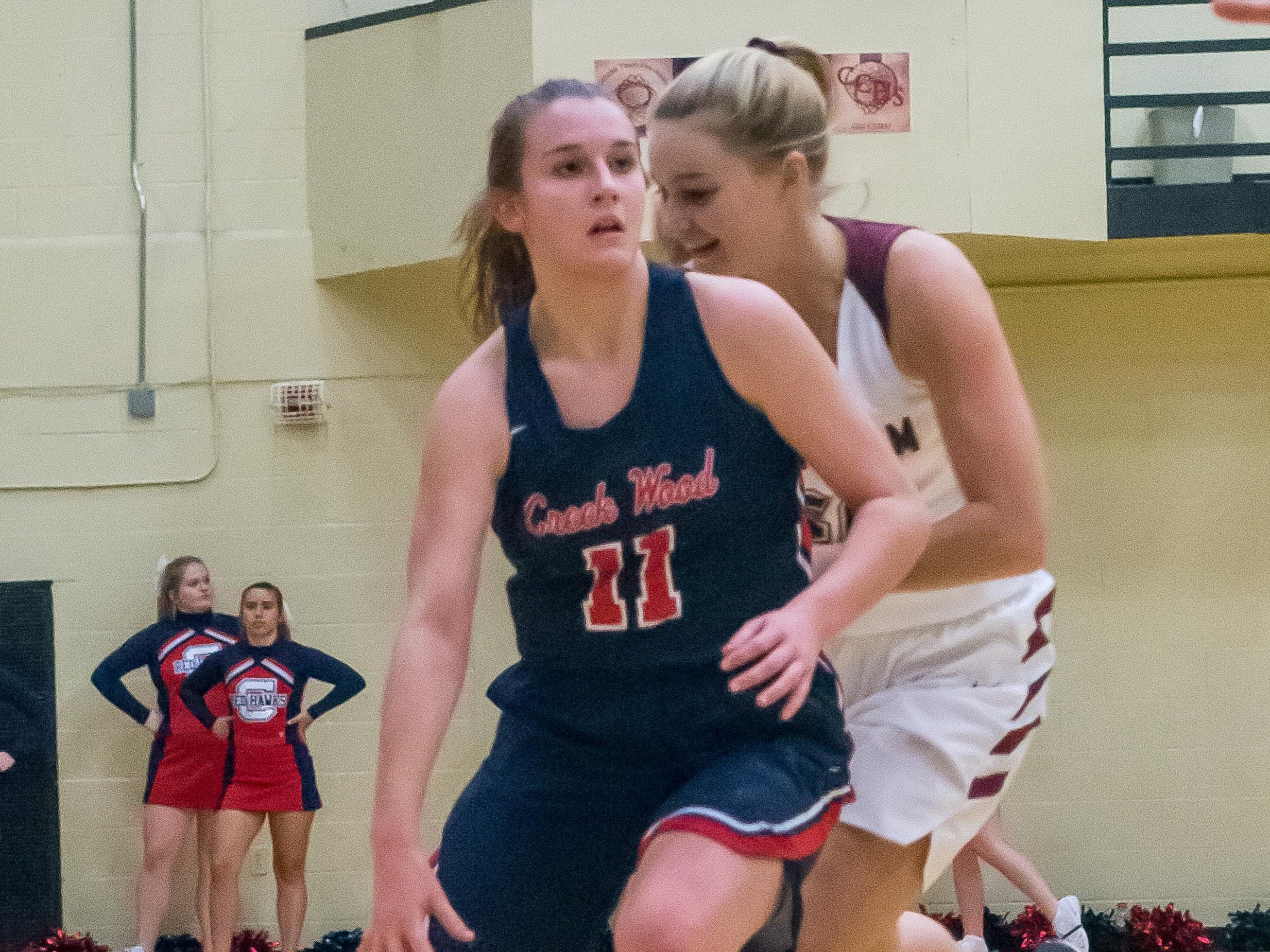 Creek Wood's  Emily Michael scored six points for the Lady Red Hawks.